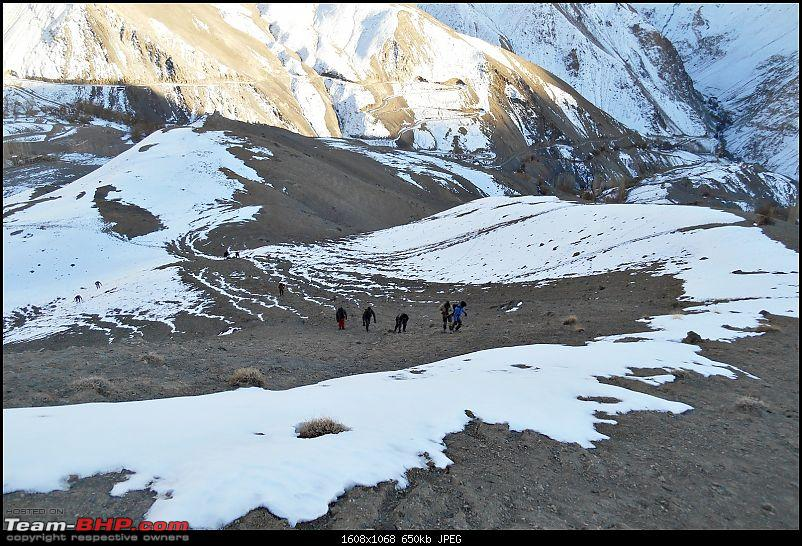 Where eagles dare: A winter sojourn to Ladakh!-dscn3924.jpg