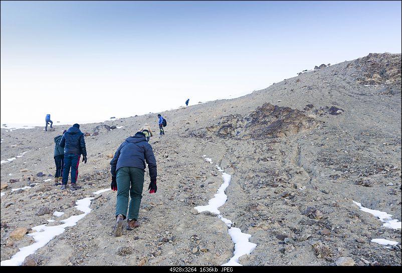 Where eagles dare: A winter sojourn to Ladakh!-dsc_2490.jpg