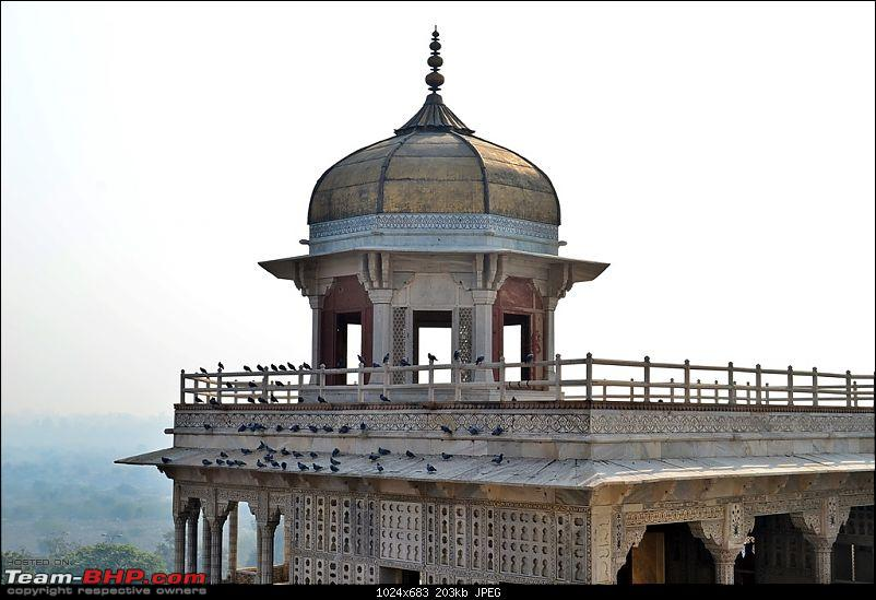 West Bengal to Rajasthan Road Trip to celebrate New Year�s Eve-dsc_2322.jpg