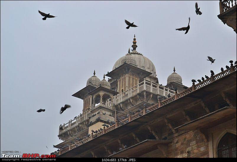West Bengal to Rajasthan Road Trip to celebrate New Year�s Eve-albert-hall-1.jpg