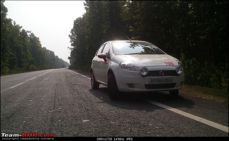 Punto to the rescue: Hyderabad to Asansol-reserver-forest-bushnupur-.jpg