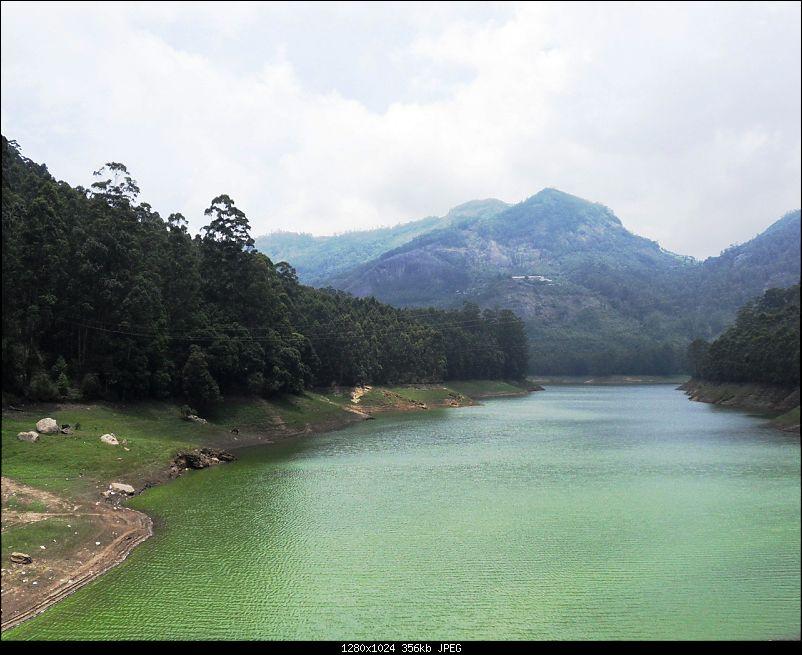 Photologue: Thekkady & Munnar-sdc16333.jpg