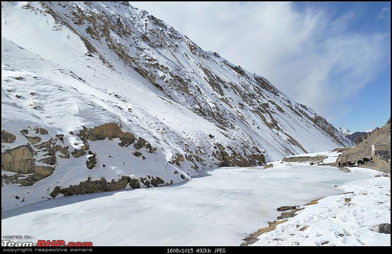 Where eagles dare: A winter sojourn to Ladakh!-dscn4006.jpg