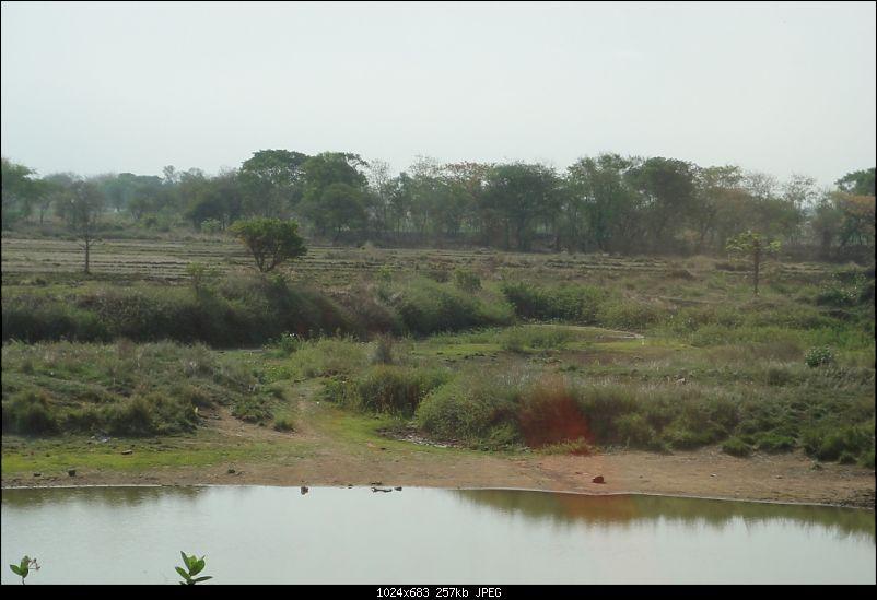 The Call of Lord Jagannath: Weekend Getaway to Puri from Kolkata-dsc07841.jpg