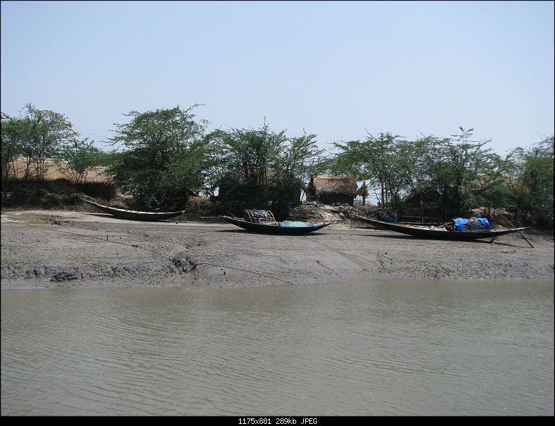Into the Mangroves of the Sundarbans-img_0015.jpg