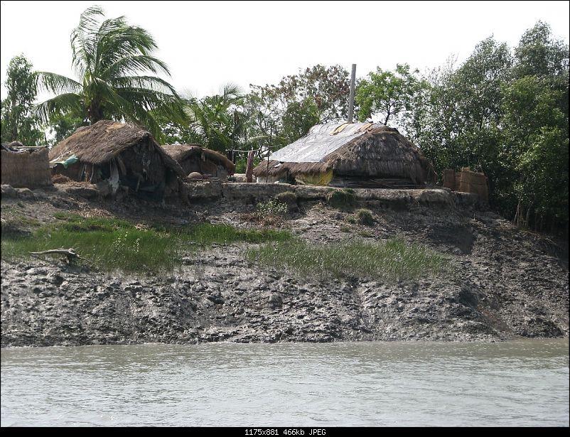 Into the Mangroves of the Sundarbans-img_0036.jpg