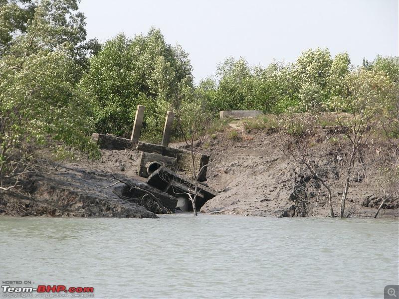 Into the Mangroves of the Sundarbans-img_0047.jpg
