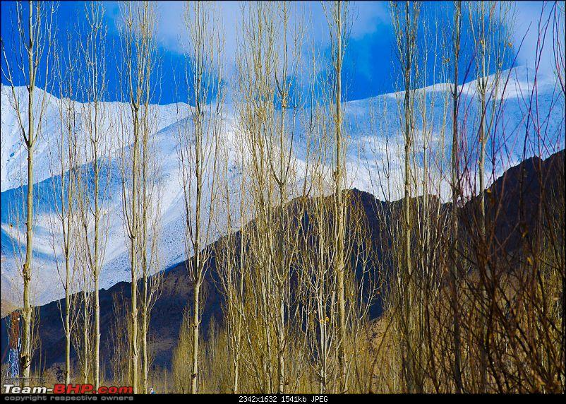The Air I Breathe - Leh-_dsc4751.jpg