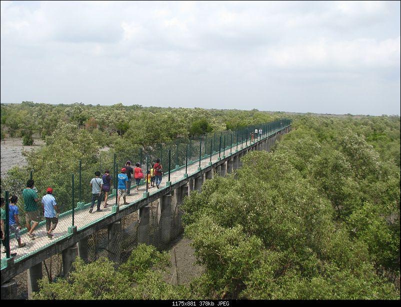 Into the Mangroves of the Sundarbans-img_0163.jpg