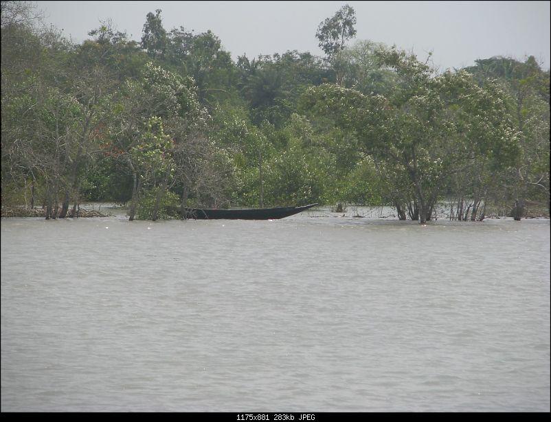 Into the Mangroves of the Sundarbans-img_0264.jpg
