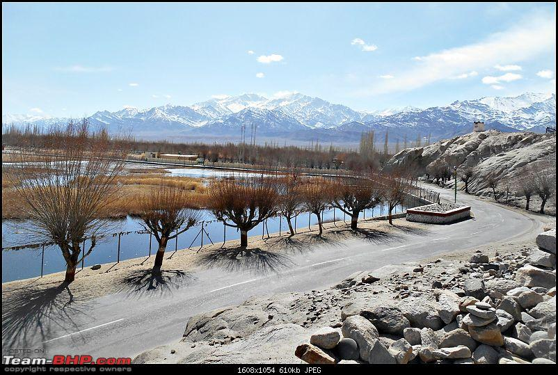 Where eagles dare: A winter sojourn to Ladakh!-dscn4010.jpg