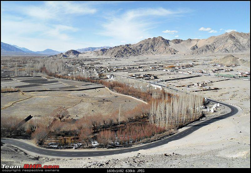 Where eagles dare: A winter sojourn to Ladakh!-dscn4078.jpg