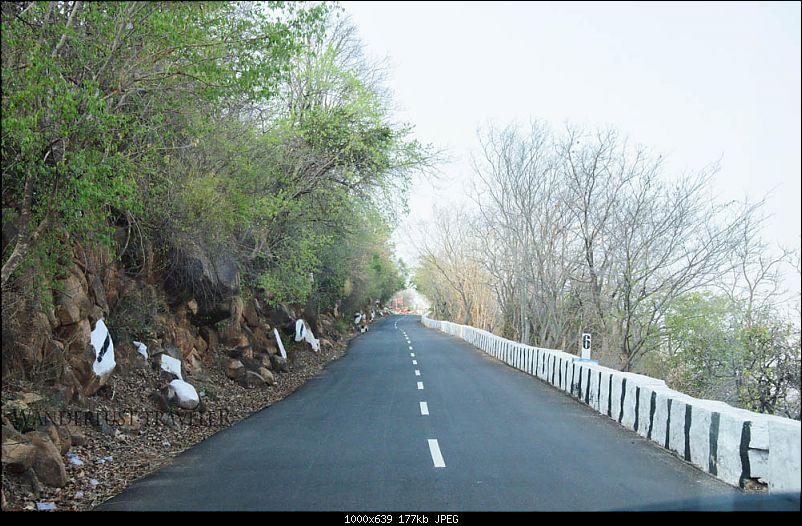 Wanderlust Traveller: Half-day drive to Yelagiri from Bangalore-suh_0386.jpg