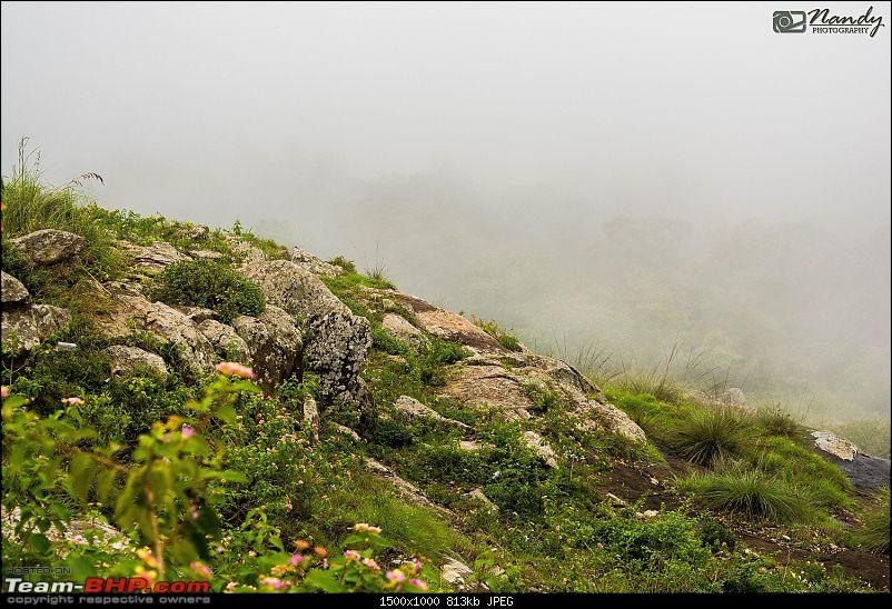 Mist, rain, nature and twisties - Ride to Yercaud!-4.jpg