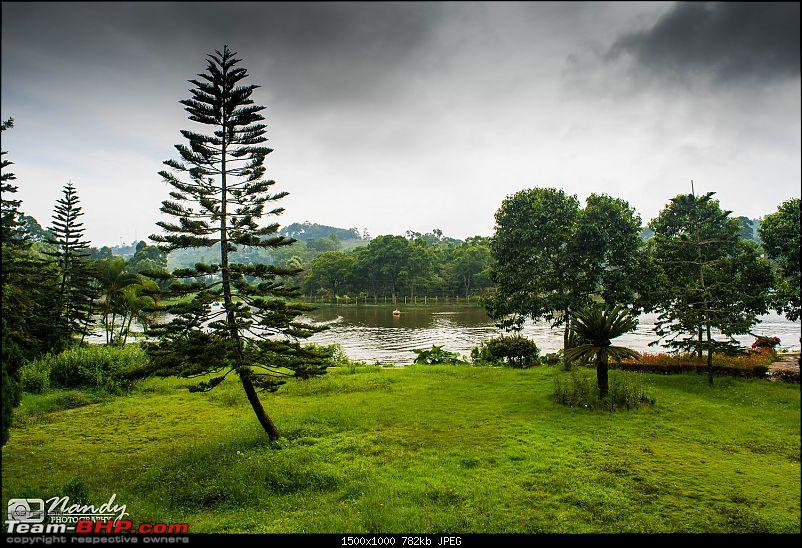 Mist, rain, nature and twisties - Ride to Yercaud!-dsc_7460.jpg