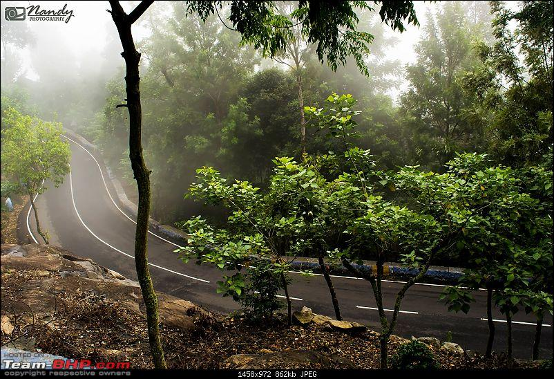 Mist, rain, nature and twisties - Ride to Yercaud!-dsc_7472.jpg