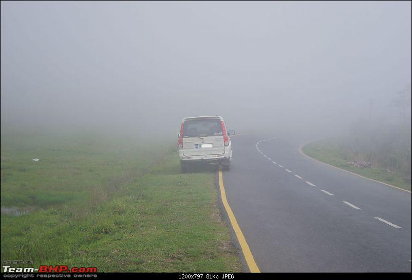 Chasing the rains, driving in the clouds - A dash to Cherrapunjee-dsc03170.jpg