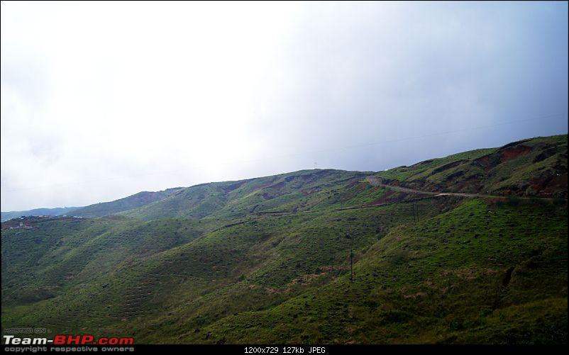 Chasing the rains, driving in the clouds - A dash to Cherrapunjee-dsc03419.jpg