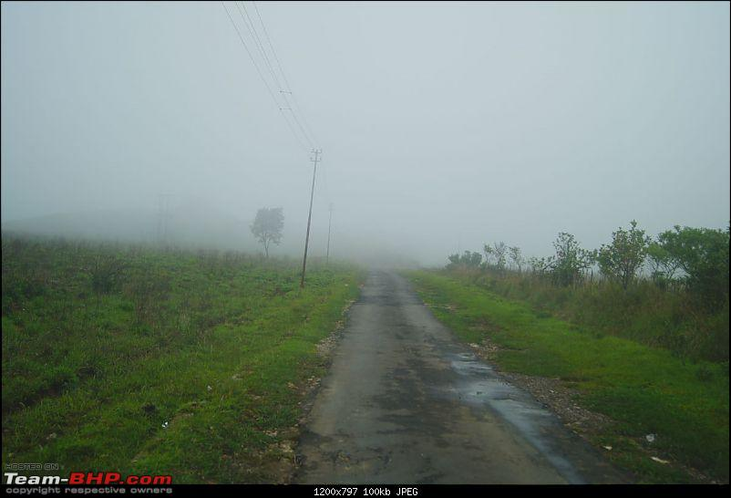 Chasing the rains, driving in the clouds - A dash to Cherrapunjee-dsc03440.jpg