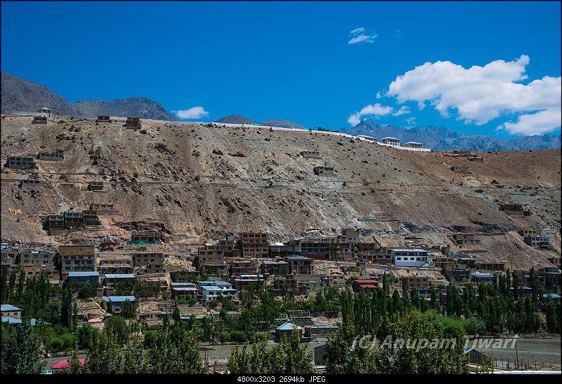 Ladakh through my eyes-dsc_0718.jpg