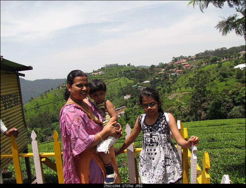 Exploring the Nilgiris by Road-img_3499.jpg