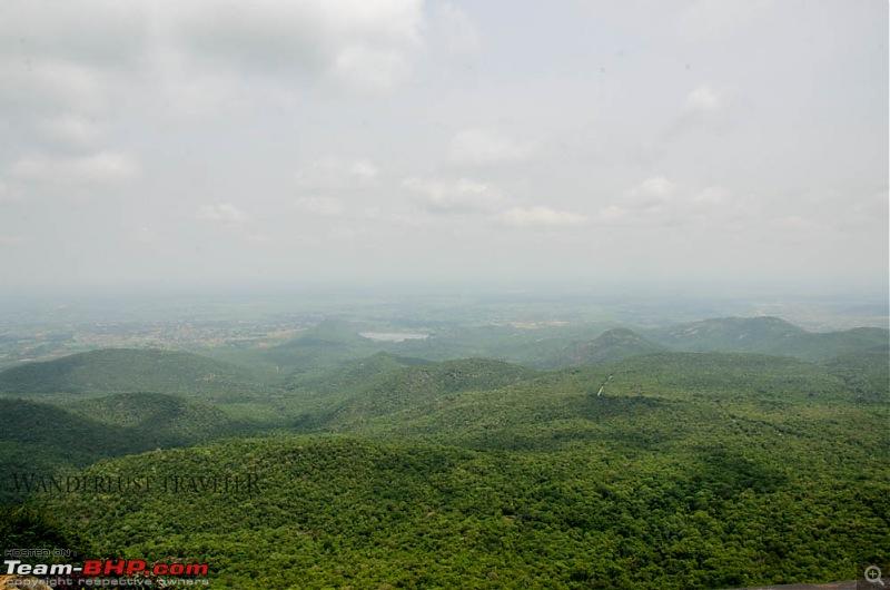 Wanderlust Traveller: Into the wild - Biligiriranga Hills and K Gudi-suh_1624.jpg