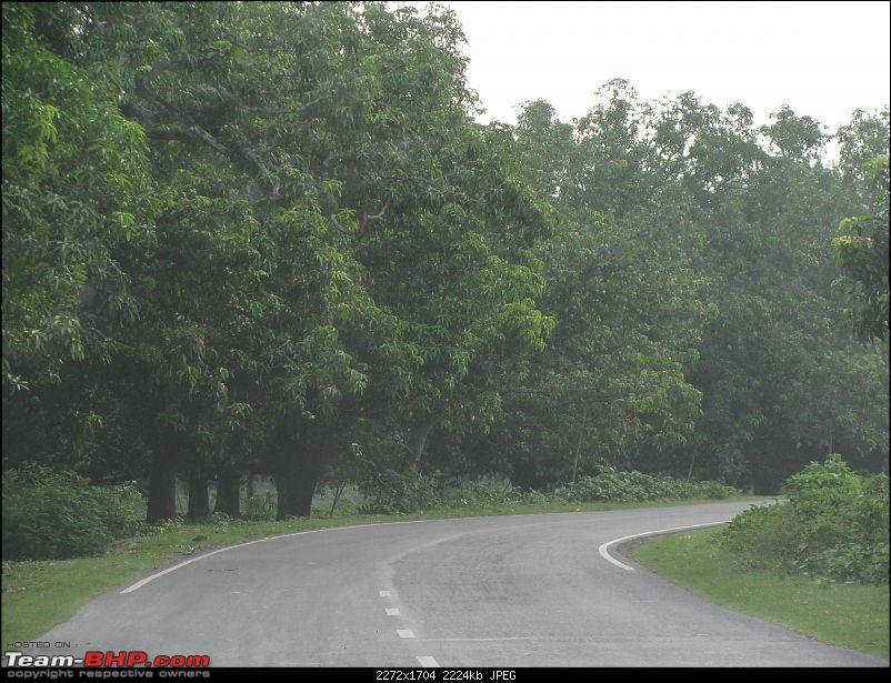 Dooars - A blissful drive to the lap of nature-img_4341.jpg
