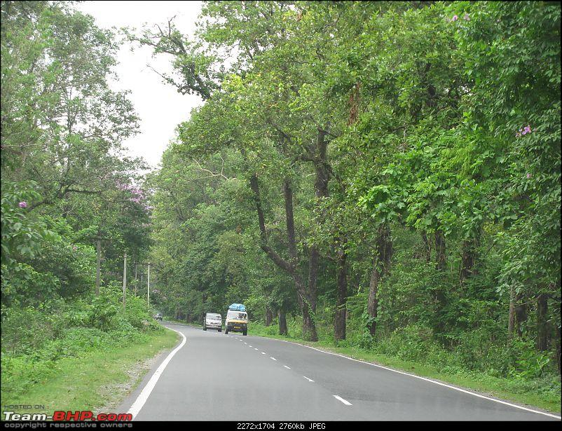 Dooars - A blissful drive to the lap of nature-img_4446.jpg