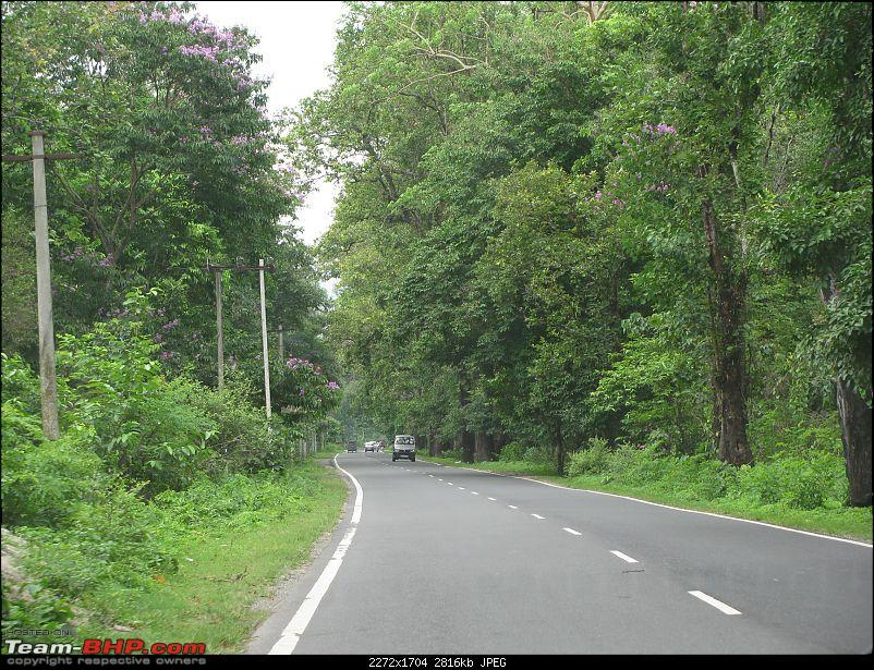 Dooars - A blissful drive to the lap of nature-img_4447.jpg