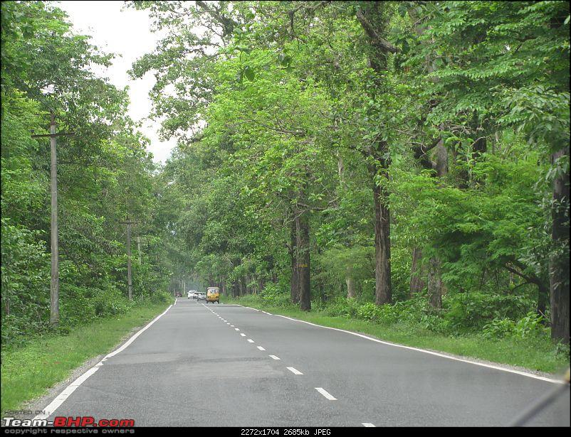 Dooars - A blissful drive to the lap of nature-img_4458.jpg