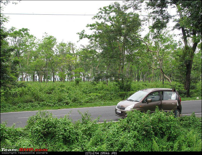 Dooars - A blissful drive to the lap of nature-img_4597.jpg