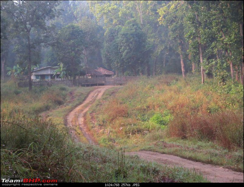 Photologue: Pench & Kanha National Park-7.jpg