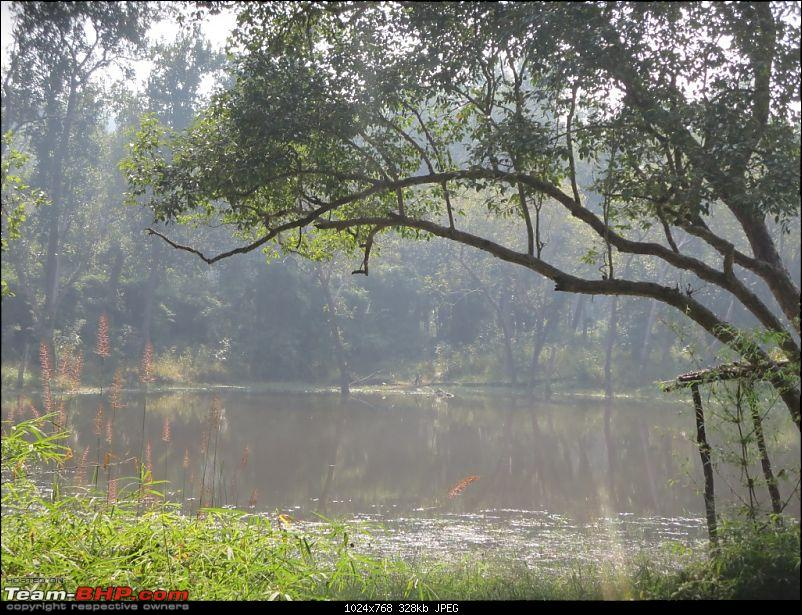 Photologue: Pench & Kanha National Park-6.jpg