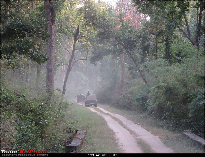 Photologue: Pench & Kanha National Park-12.jpg