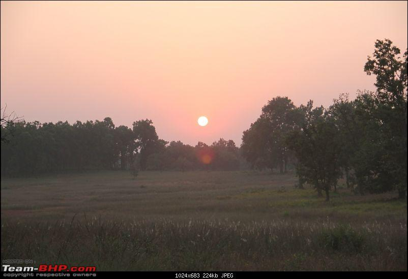 Photologue: Pench & Kanha National Park-15.jpg