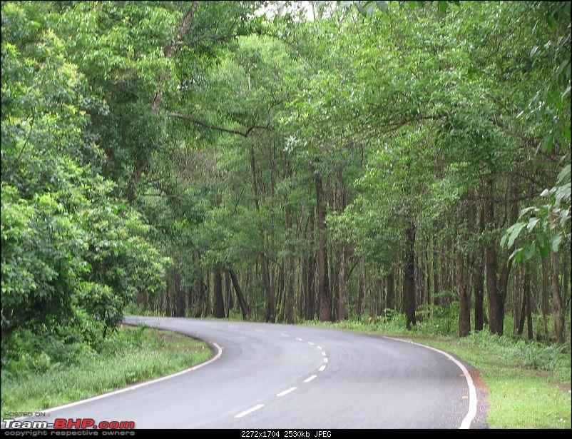 Dooars - A blissful drive to the lap of nature-img_4883.jpg