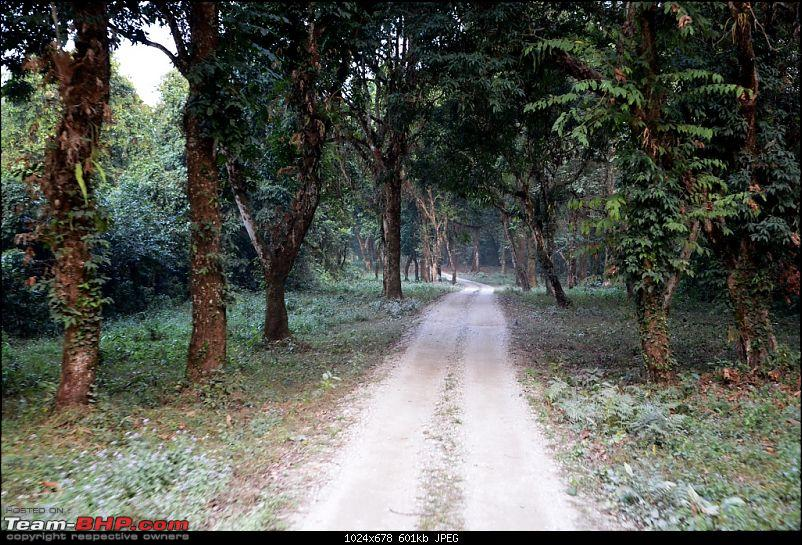 West Bengal - A treasure for tourists-dsc_6727.jpg