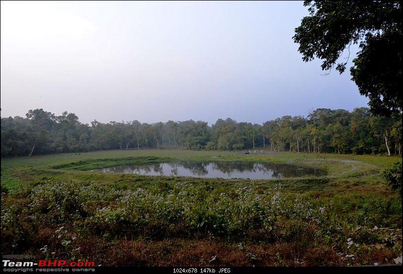 West Bengal - A treasure for tourists-dsc_6728.jpg