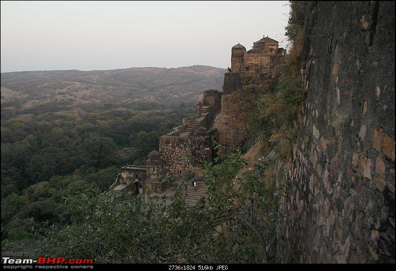 Maiden trip to the Ranthambore Tiger Reserve-rtr001.jpg