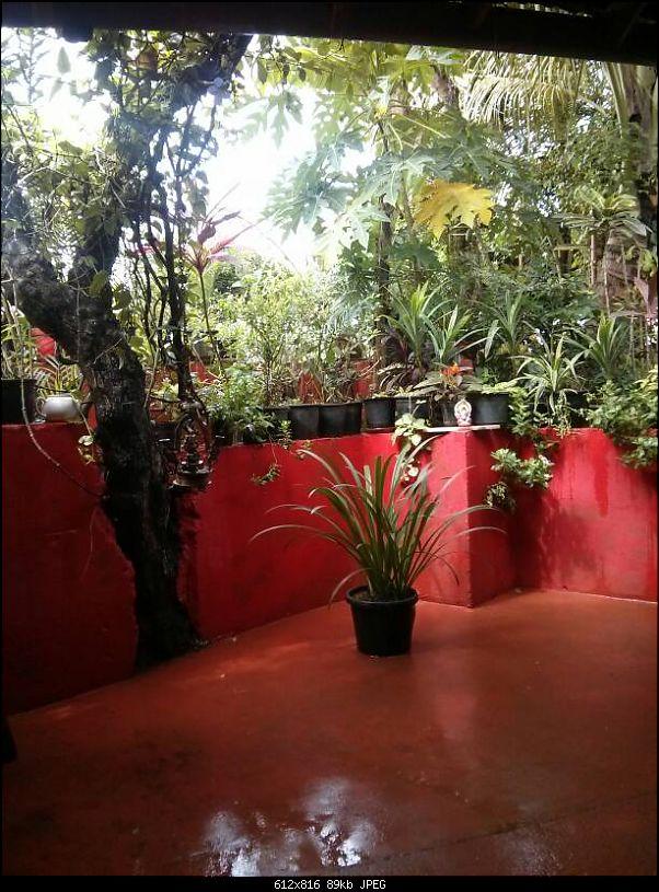 Welcoming the monsoon in Goa! Road-trip in a Maruti Ritz-1434854958294.jpg