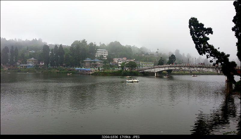 Darjeeling for Dummies-20150607_132829.jpg