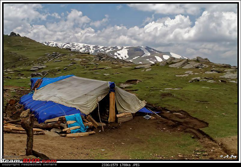 Lure of the Himalayas � Himachal beckons again!-187.jpg