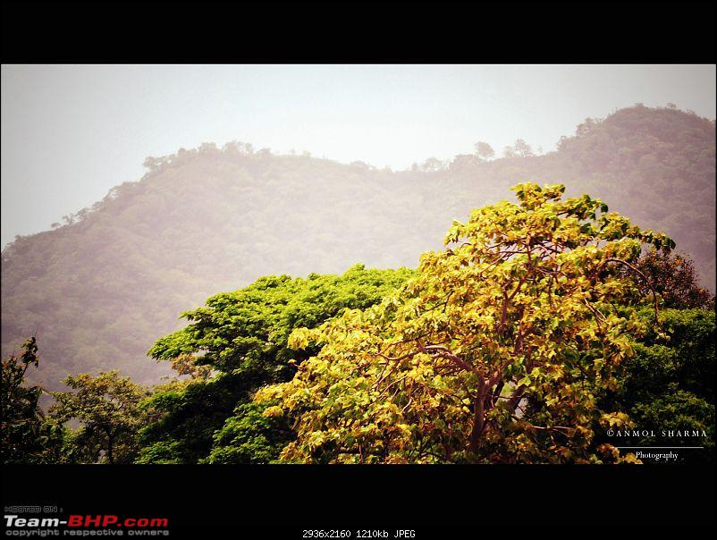The Great Indian Road Trip - Delhi to Mumbai - 1500+ kms of pure bliss!-dsc_6174.jpg