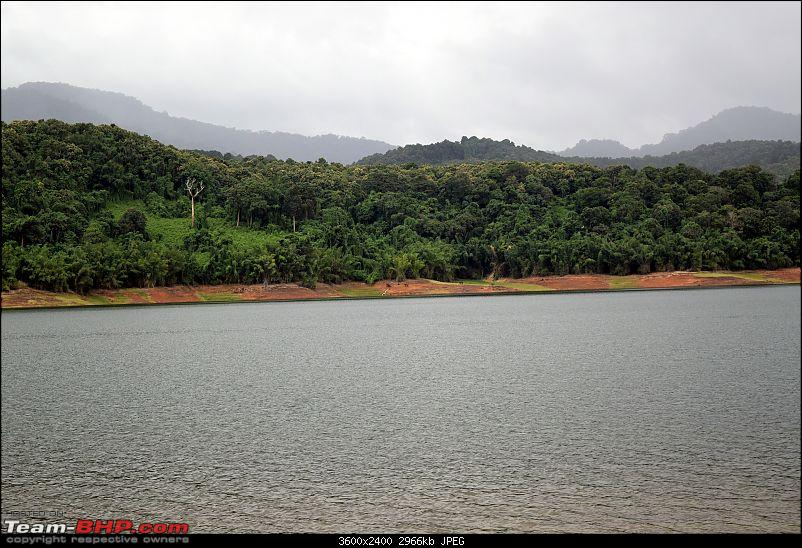 A night at the Parambikulam Tiger Reserve-parambikkulam09thaug2015-182.jpg