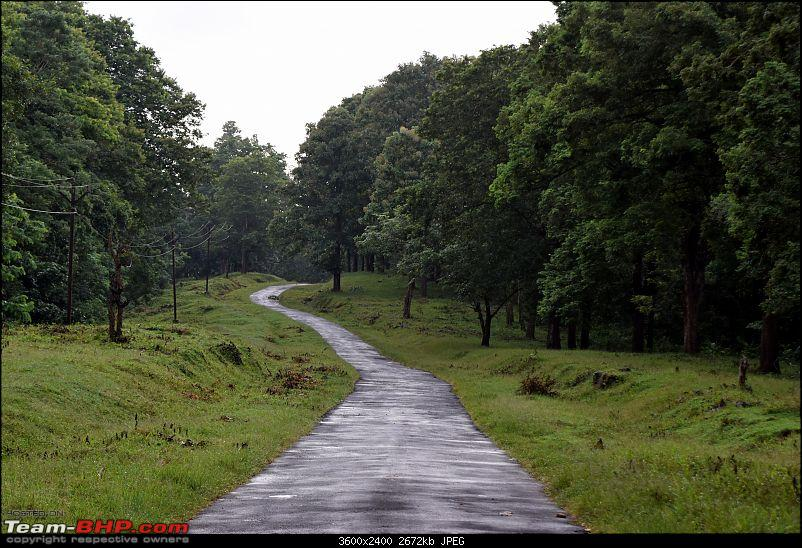 A night at the Parambikulam Tiger Reserve-day2road.jpg