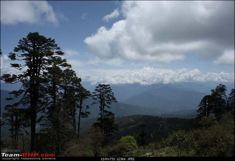 Wet Bhutan and Green Dooars-dochula2.jpg