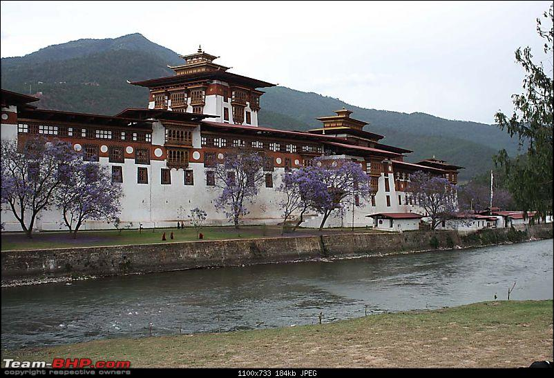Wet Bhutan and Green Dooars-dzong2.jpg