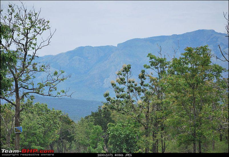 Another Trip Report to Ooty!-dsc_1256.jpg