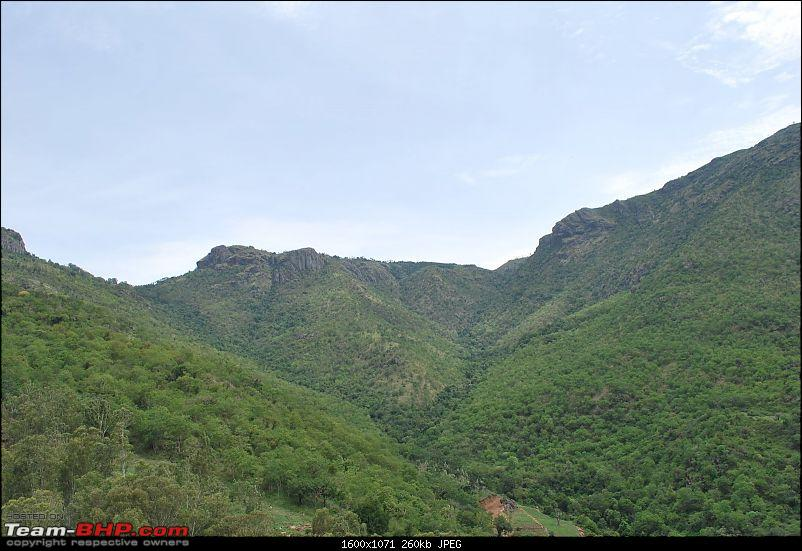 Another Trip Report to Ooty!-dsc_1278.jpg