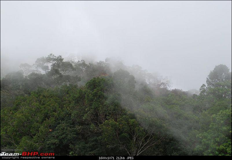 Another Trip Report to Ooty!-dsc_1519.jpg